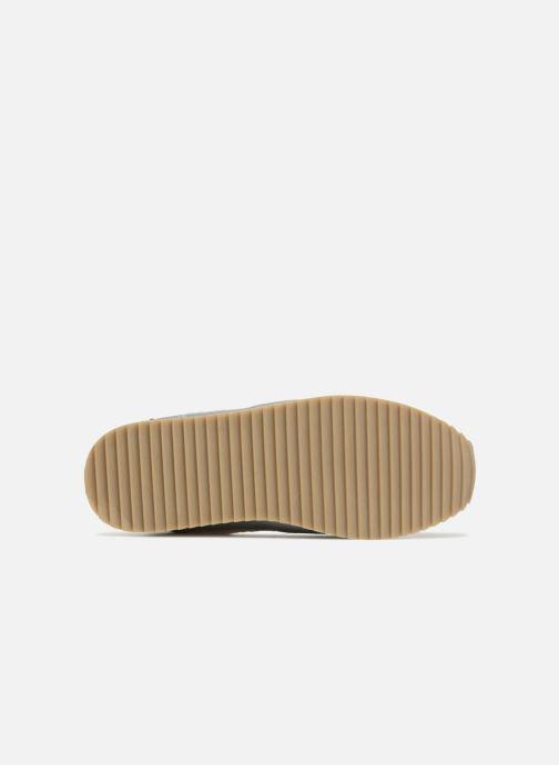 Baskets Gioseppo MILTERY Blanc vue haut
