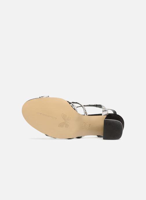 Sandales et nu-pieds Elizabeth Stuart Burem 723 Multicolore vue haut