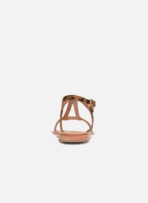 Sandales et nu-pieds Les Tropéziennes par M Belarbi HALEO Multicolore vue droite