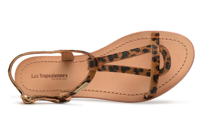 Sandales et nu-pieds Les Tropéziennes par M Belarbi HALEO Multicolore vue gauche