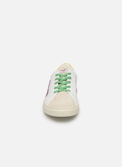 Trainers Veja Esplar Small Lace White model view