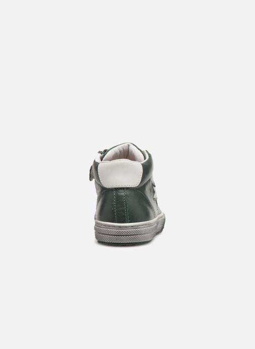 Sneaker Stones and Bones Robbi grün ansicht von rechts