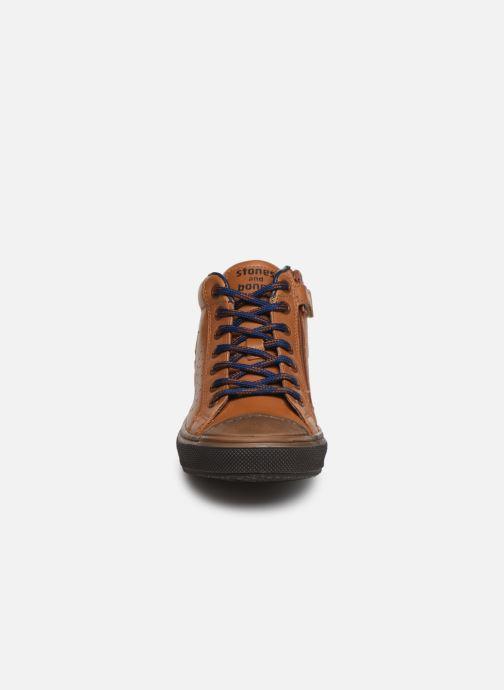 Baskets Stones and Bones Robbi Marron vue portées chaussures
