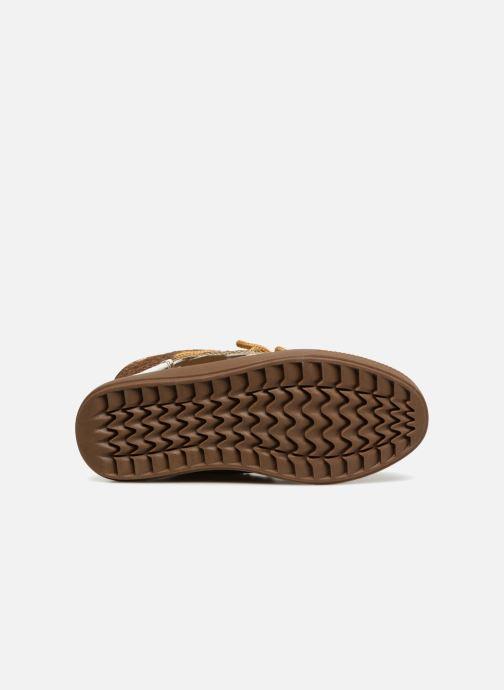 Chaussures de sport Colors of California Sherine Or et bronze vue haut