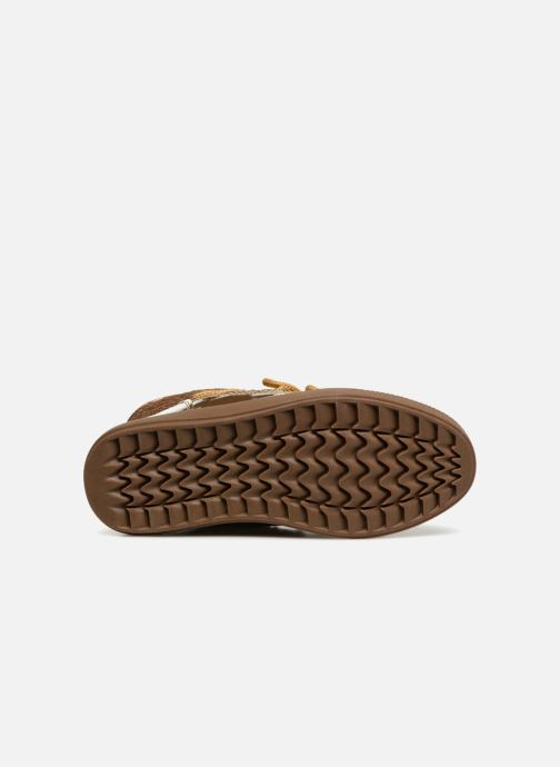 Zapatillas de deporte Colors of California Sherine Oro y bronce vista de arriba
