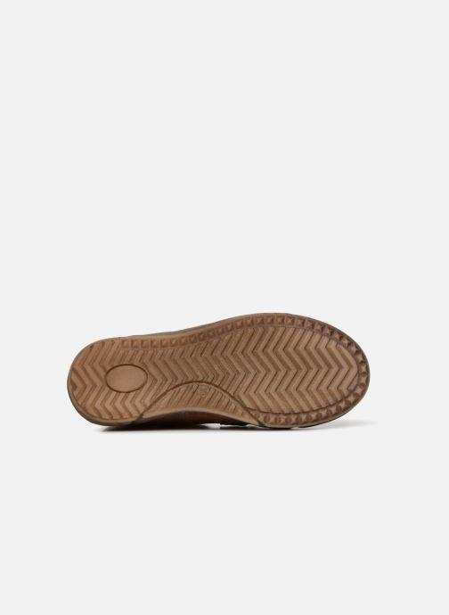 Baskets Minibel Ricardo Marron vue haut