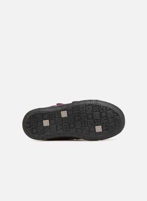 Sneakers Noël Perly Lilla se foroven