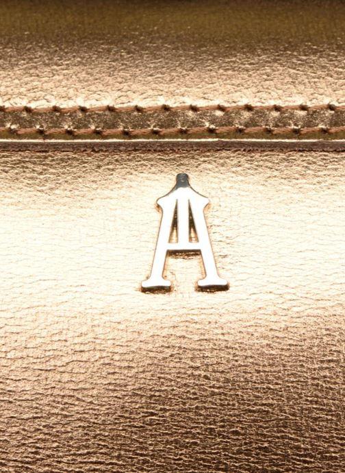 Handtaschen Craie PETITE ETUDE gold/bronze ansicht von links