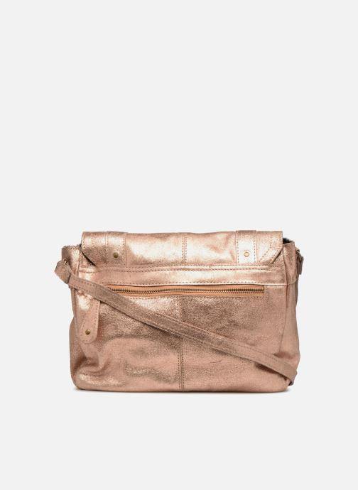 Sacs à main Pieces Joy Leather Bag Or et bronze vue face