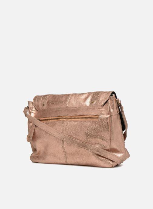 Sacs à main Pieces Joy Leather Bag Or et bronze vue droite