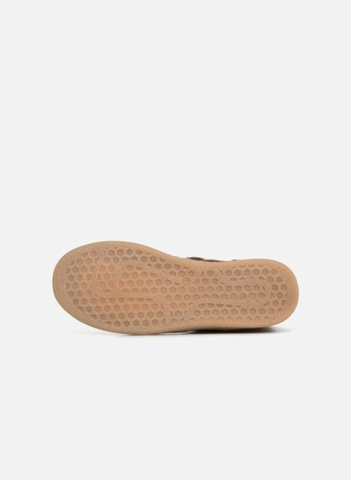 Boots en enkellaarsjes PèPè Pal Bruin boven