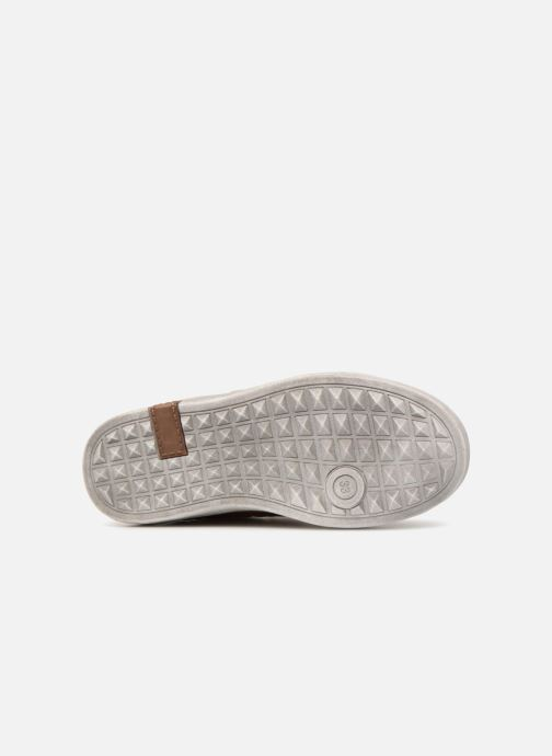 Sneakers Bopy Tassevel Sk8 Bruin boven