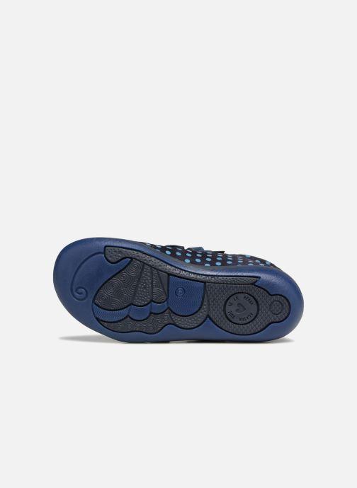 Baskets Agatha Ruiz de la Prada Butterfly S dots Bleu vue haut