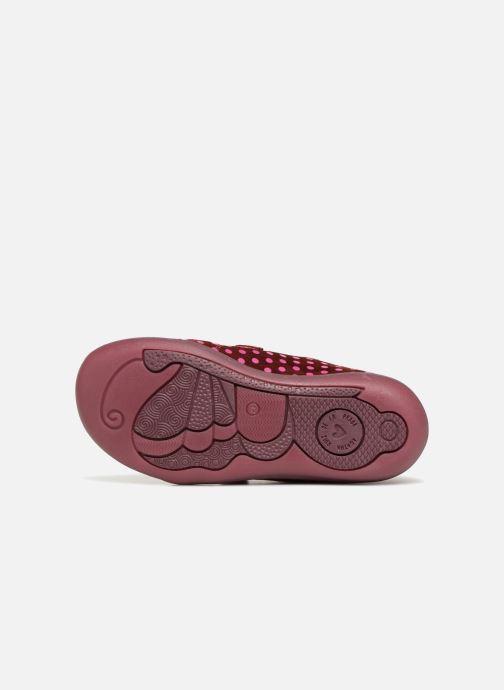 Sneakers Agatha Ruiz de la Prada Butterfly S dots Roze boven