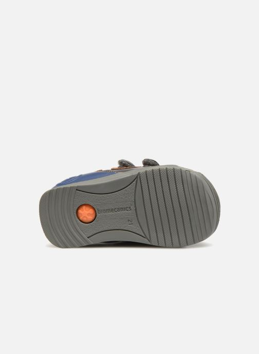 Trainers Biomecanics Capitan Grey view from above