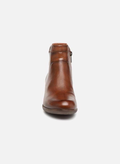 Stivaletti e tronchetti Pikolinos Rotterdam 902-8735 Marrone modello indossato