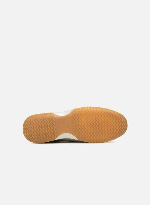Sneaker Geox D HAPPY A D4258A beige ansicht von oben