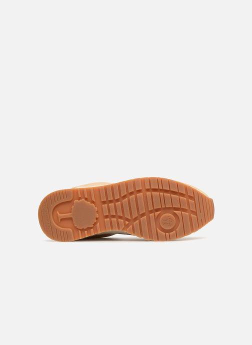 Sneakers Faguo Ivy Rosa immagine dall'alto