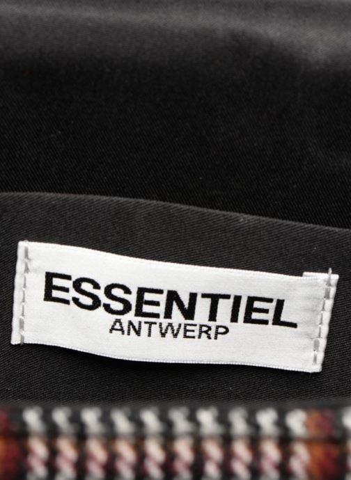 Sacs à main Essentiel Antwerp Raury small shoulderbag Gris vue derrière
