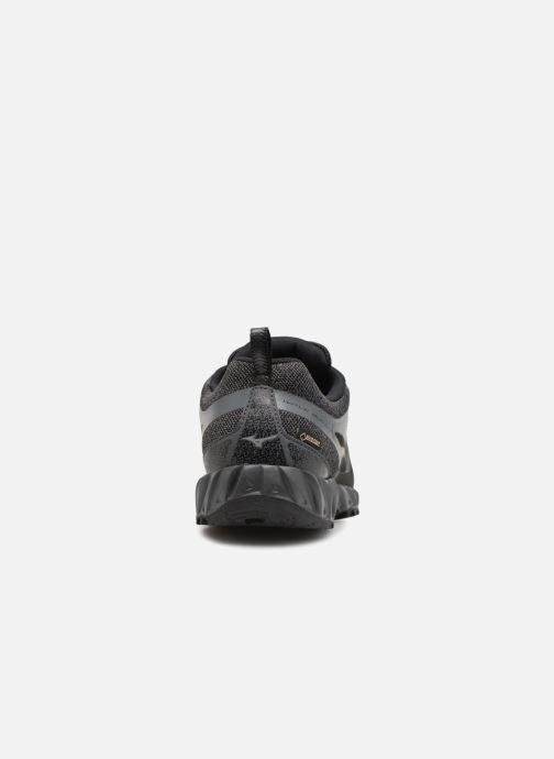 Chaussures de sport Mizuno WAVE IBUKI GTX Noir vue droite