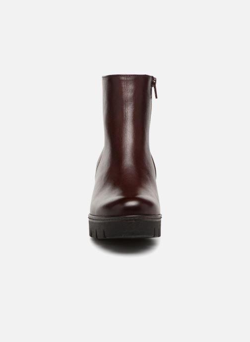 Bottines et boots Gabor Capucine Bordeaux vue portées chaussures