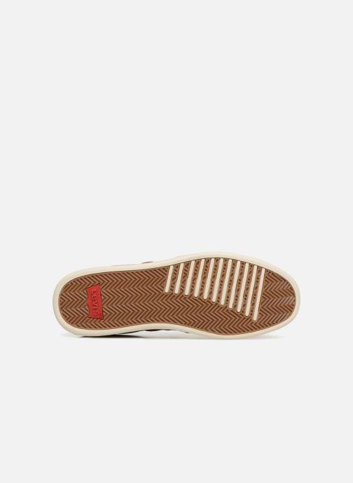 Sneakers Levi's Tulare Marrone immagine dall'alto