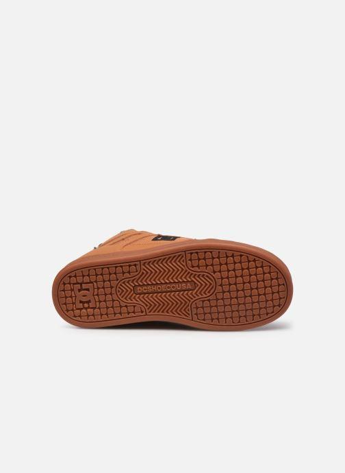 Deportivas DC Shoes Pure High-Top WNT Marrón vista de arriba