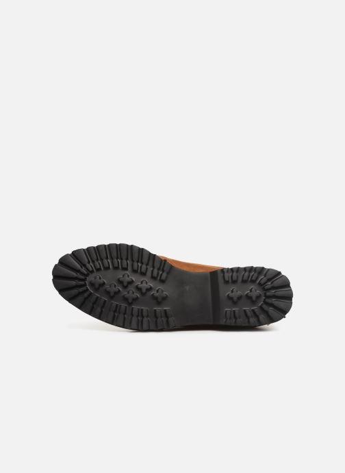 Zapatos con cordones Les P'tites Bombes GIOVANNA Marrón vista de arriba