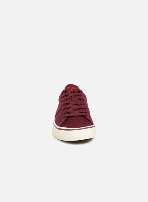 Trainers Polo Ralph Lauren Sayer Canvas Burgundy model view