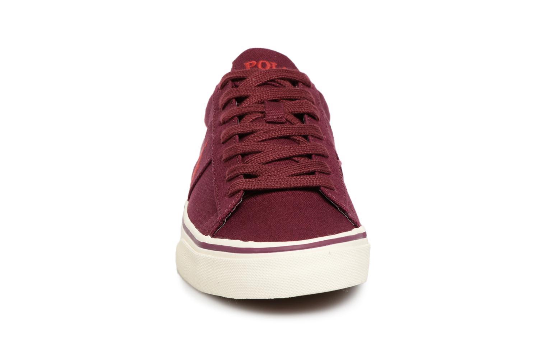 Baskets Polo Ralph Lauren Sayer Canvas Bordeaux vue portées chaussures