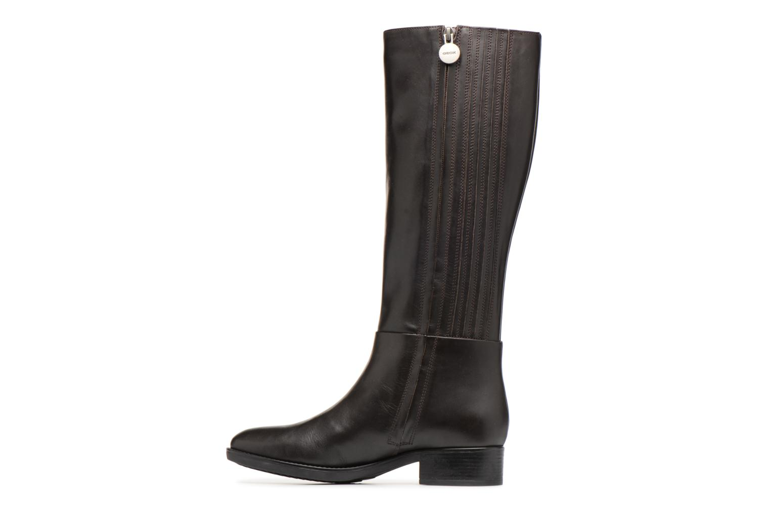Boots & wellies Geox D  FELICITY D D84G1D Brown front view