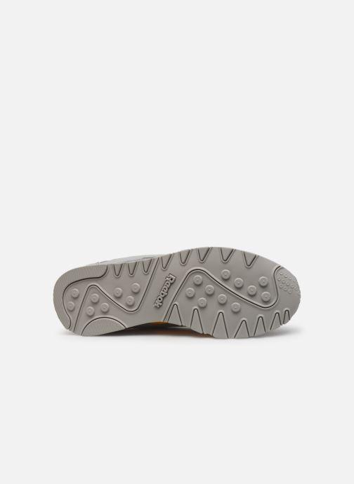 Sneakers Reebok CL NYLON M TXT Grijs boven