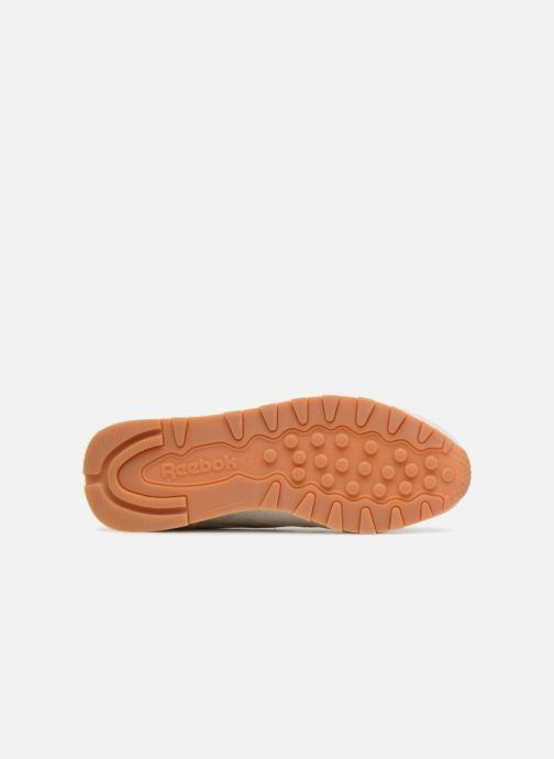 Sneaker Reebok CL LTHR beige ansicht von oben