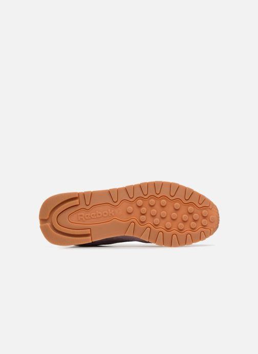 Sneakers Reebok CL LTHR Viola immagine dall'alto