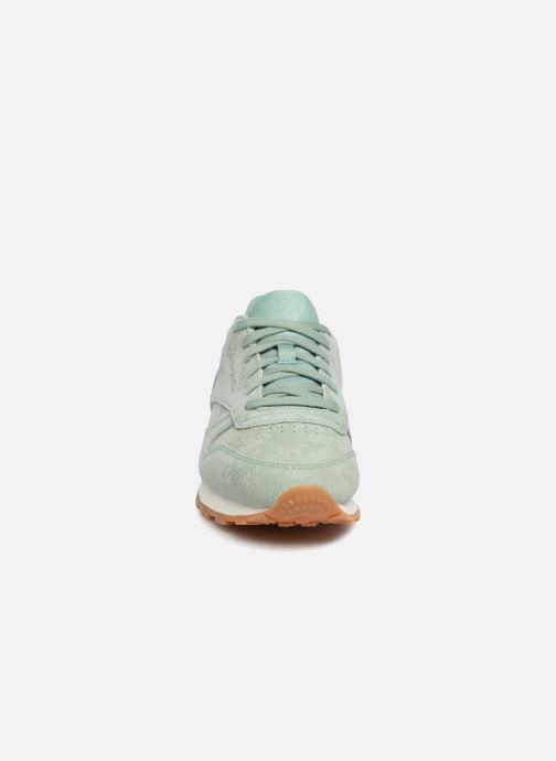 Sneaker Reebok CL LTHR grün schuhe getragen