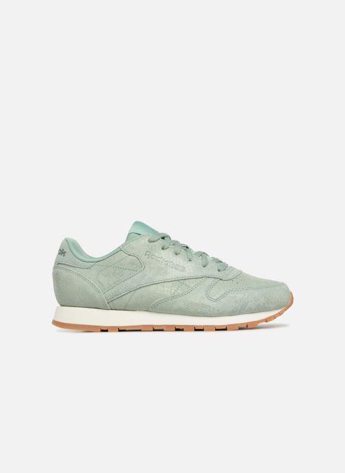 Sneaker Reebok CL LTHR grün ansicht von hinten