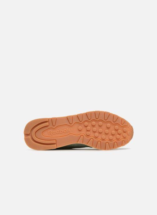 Sneaker Reebok CL LTHR grün ansicht von oben