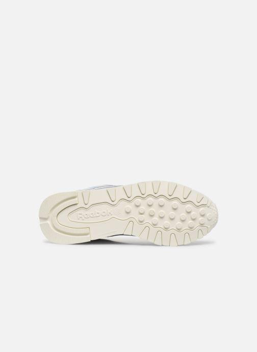 Sneaker Reebok CL LTHR grau ansicht von oben