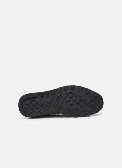 Sneaker Reebok CL NYLON M blau ansicht von oben