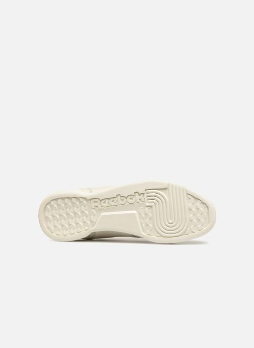 Trainers Reebok WORKOUT LO PLUS White view from above