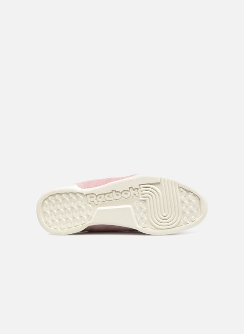 Trainers Reebok WORKOUT LO PLUS Pink view from above