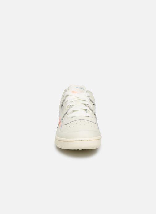 Baskets Reebok WORKOUT LO PLUS Beige vue portées chaussures