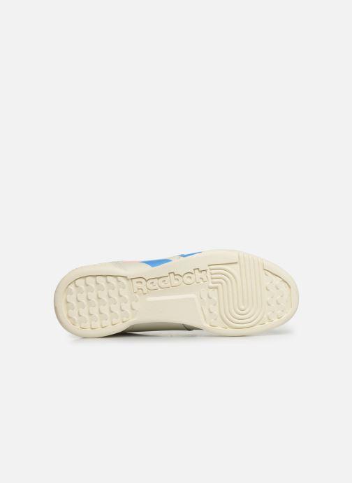 Sneakers Reebok WORKOUT LO PLUS Beige immagine dall'alto