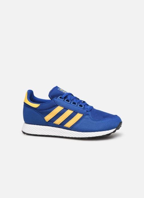Sneaker adidas originals FOREST GROVE J blau ansicht von hinten