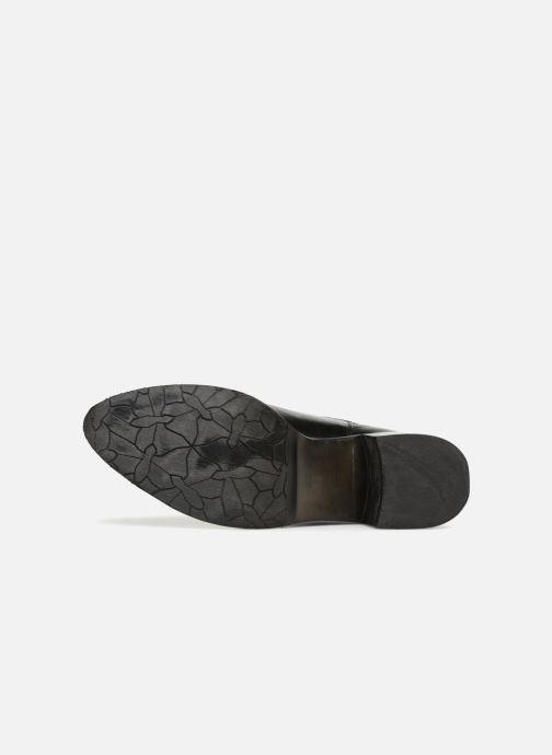Stiefeletten & Boots PintoDiBlu 79260 schwarz ansicht von oben