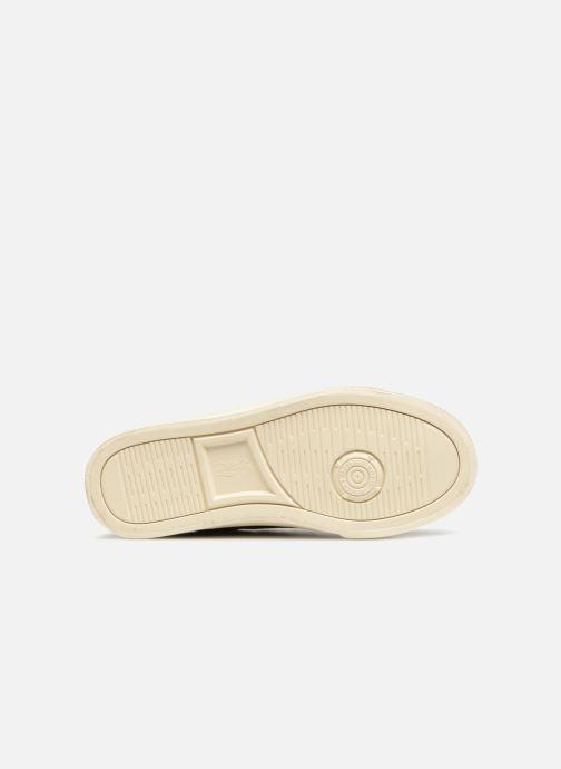 Sneakers Polo Ralph Lauren Geoff EZ Blauw boven