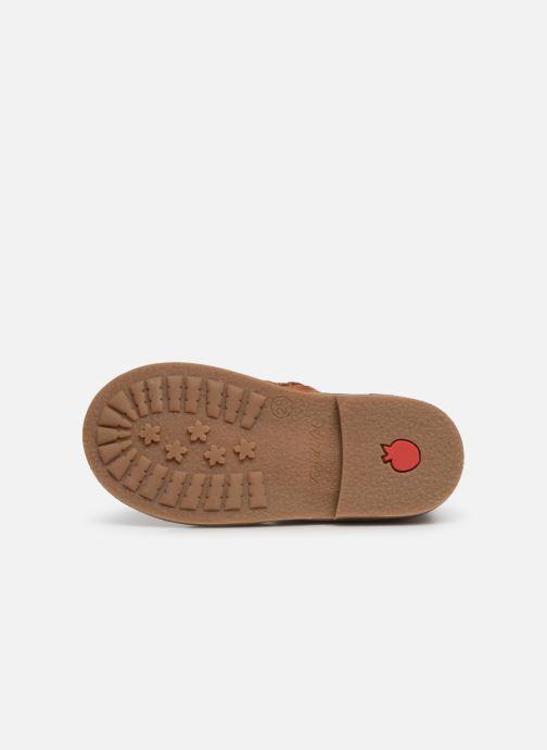 Boots en enkellaarsjes Pom d Api Retro Boots Bruin boven