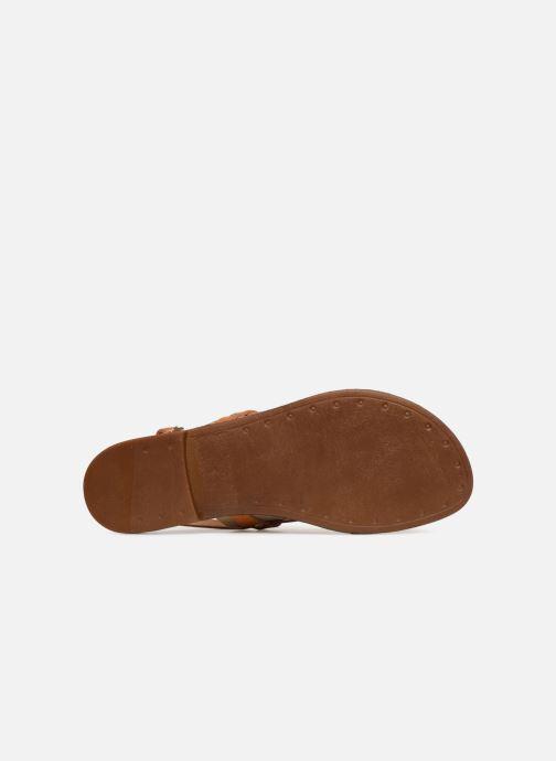 Sandales et nu-pieds Pieces ABELLE LEATHER SANDAL Marron vue haut