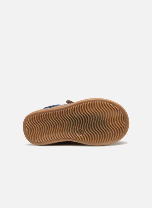 Sneakers Kickers Denis Bruin boven