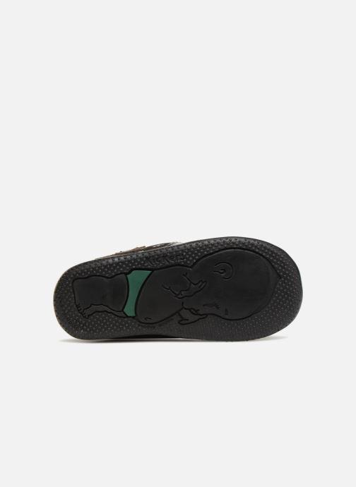 Bottines et boots Kickers Boustar Noir vue haut